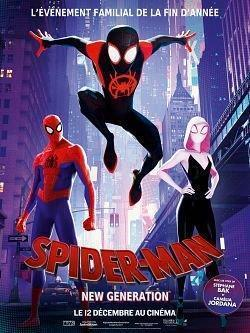 telecharger Spider-Man Into the Spider-Verse 2018 FRENCH 720p BluRay x264 AC3-EXTREME zone telechargement