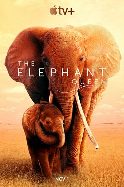 telecharger The Elephant Queen 2019 DOC FRENCH 720p WEB H264-NEO zone telechargement