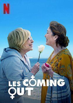telecharger Les Coming Out 2019 FRENCH HDRip XviD-EXTREME